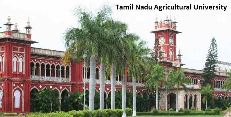 How to Get Admission in Tamil Nadu Agricultural University For 2020 Batch?